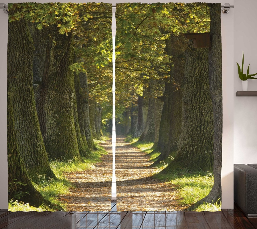 Alley with Oak Trees Scenic Perspective Picture