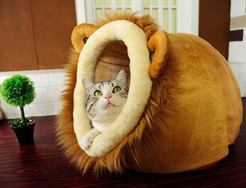 geekercity-lion-shaped-cute-warm-plush-pet-dog-cat-bed