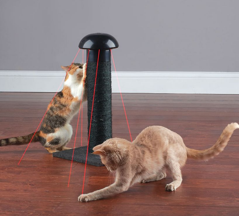 the-felines-laser-chasing-scratch-post