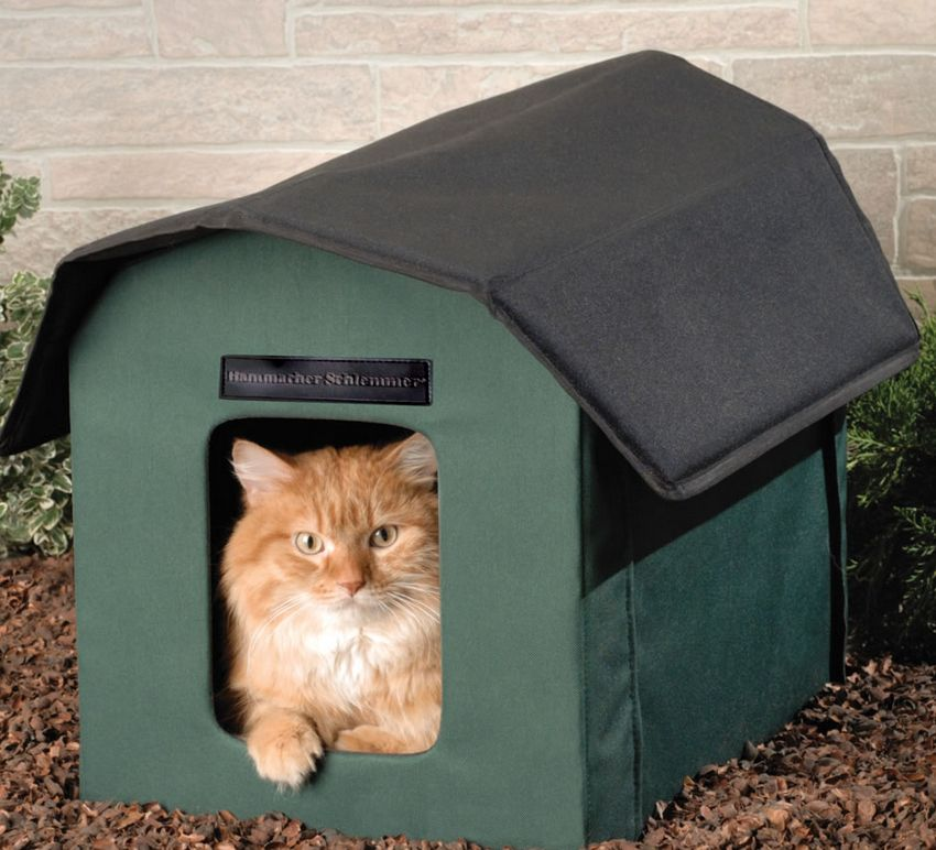 the-only-outdoor-heated-cat-shelter