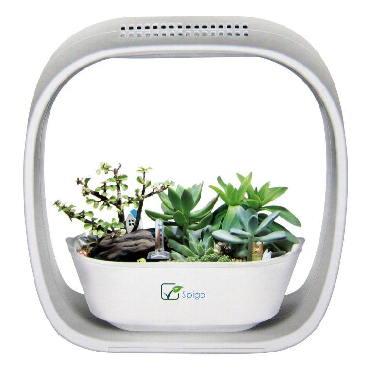spigo-indoor-led-light-grow-garden