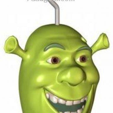Shrek Talking Shower Radio