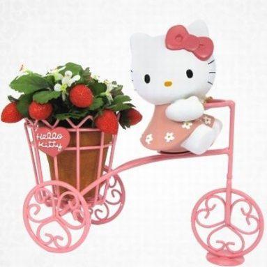 Hello Kitty Planter Holder
