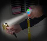 10 LED Fun Light