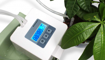Indoor Potted Plants Vacation Plant Watering