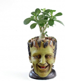 Funny Planter Indoor