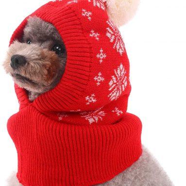 Dog Winter Hat