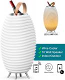 Synergy Wireless Indoor or Outdoor Bluetooth Speaker