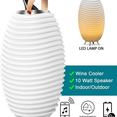 Synergy Wireless Indoor or Outdoor Bluetooth Speaker