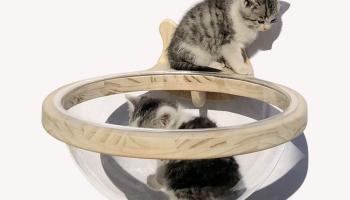 Cat Apartment Wooden Cat House