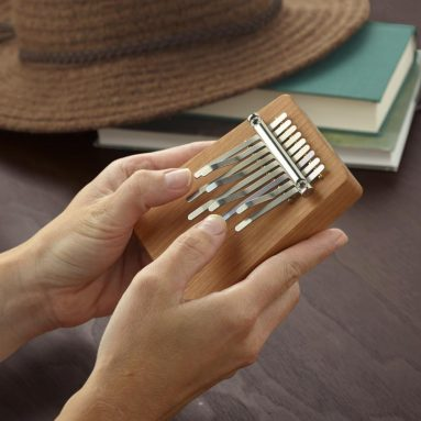 The African Thumb Piano