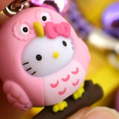 Hello Kitty Has Tuned into the  Owl!