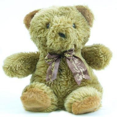 A Teddy Bear Spy