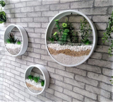 Round Wall Hanging Plant Terrarium Iron Planter Wall Hanging Container Succulent Plant