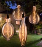 The Oversized Cordless Edison Light