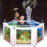 TOP 7 Coffee Table Aquarium