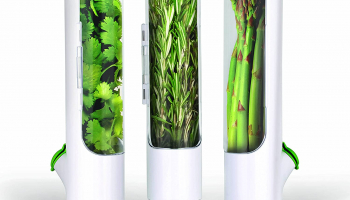 Triple the life of your fresh herbs