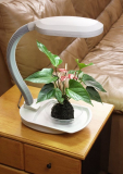 Desk Top Plant Light with Built-In Tray