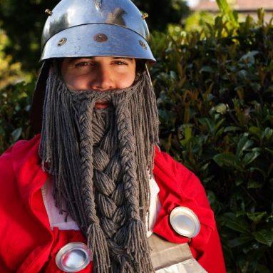 Long braided grey beard