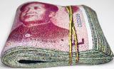 Banknote Shape Pillow