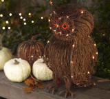 Halloween 2010 specials: decorations