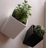 Off the Wall Mini Plant Pot