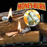 Money-To-BurnTM fire starters